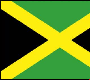 Special Damian Marley Mini-Mix