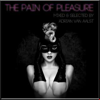 The Pain Of Pleasure (SONIC LOVE MIX)