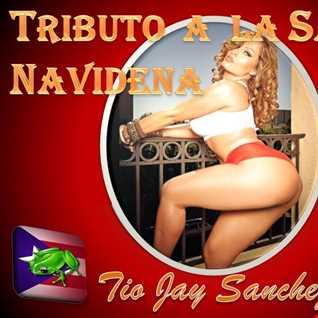 Tio Jay Tributo a la Salsa Navidena 2014