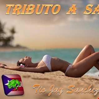 Tributo Part 35   Salsa sin Barreras   Final