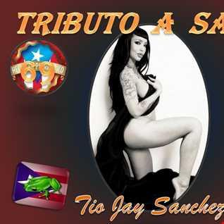 Tributo Part 69   El Prodijio de la Mexcla Salsera   Final