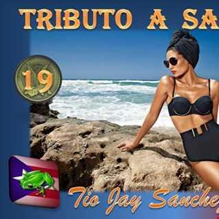 Tributo Part 19   Back to Basics Part 4   Sensillo pero Sabroso