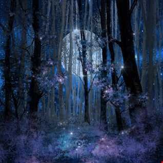 Night Tales 7