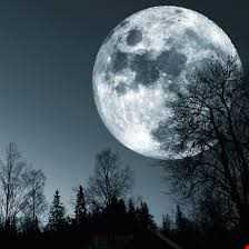 Night Tales 4