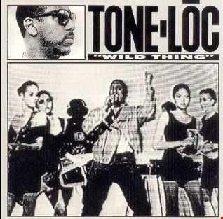 Tone Loc - Wild Thing vs Everyday of My Life (Spyder B Tech-House Remix)