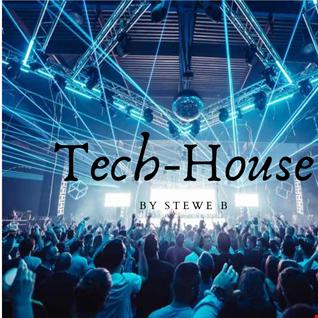 Tech House Mix by Stewe B