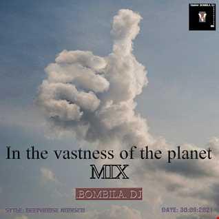 .BOMBILA. In the vastness of the planet mix