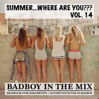BadBoy - Summer...Where Are You??? Vol. 14