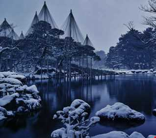 Shadez of Winter