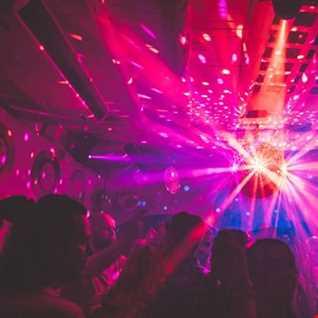 The Brand New Disco Sensation