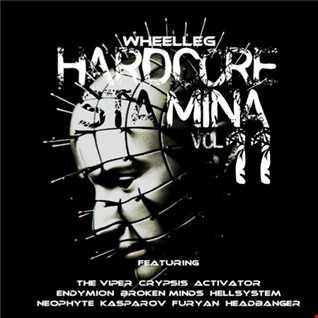 Hardcore Stamina 11 - Raw to Gabber progression