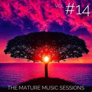 The Mature Music Sessions Vol 14   Iain Willis