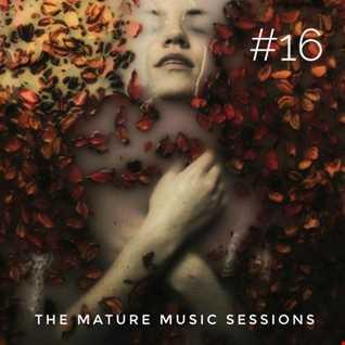 The Mature Music Sessions Vol 16   Iain Willis