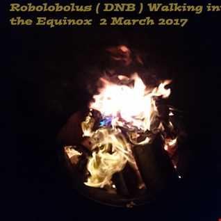 Walking into the Equinox  2 March 2017 (DnB) Robolobolus