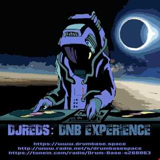 dnb experience 30112019
