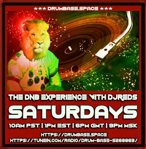 dnb experience 050119