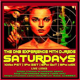 dnb experience 2303201