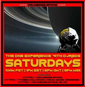THE DnB EXPERIENCE 20190216