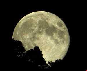 Mr.F.N.X. - Return To The Moon