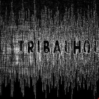 Tribalholic 8
