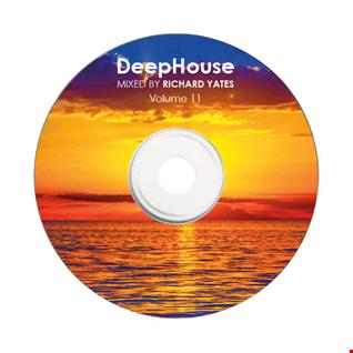 DEEP HOUSE MIX 11