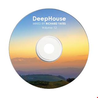 DEEP HOUSE MIX 12