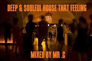 DEEP & SOULFUL HOUSE .THAT FEELING 2013 MIX