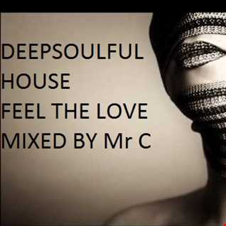 DEEPSOULFUL HOUSE . FEEL THE LOVE MARCH 2014