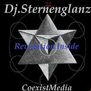 Dj.Sternenglanz Mix 272 Revolution Inside