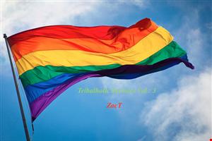 Tribalholic Services Vol 3