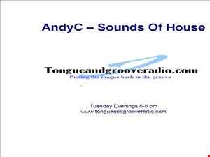 AndyC   Soulful House Sessions 011013