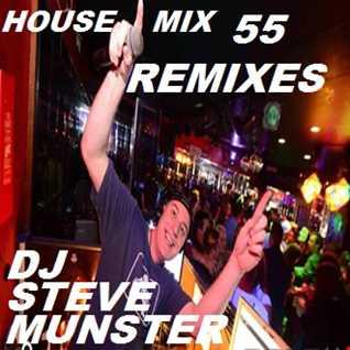 House Mix 55 (Remixes)