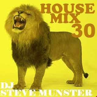 House Mix 30