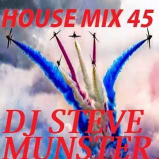 House Mix 45