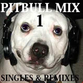 Pitbull Mix Part 1 (singles and remixes)