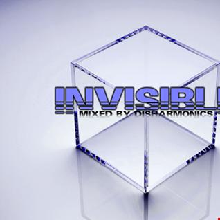 INViSiBLE 3