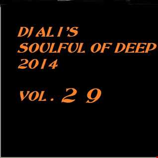 SoulFulOfDeep vol 2014.29