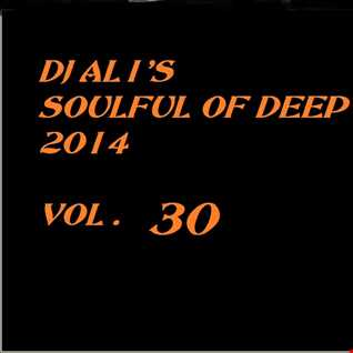 SoulFulOfDeep vol 2014.30