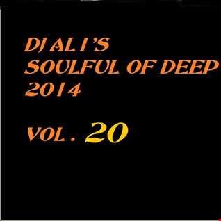 SoulFulOfDeep vol 2014.20
