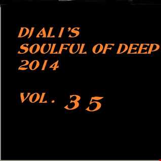 SoulFulOfDeep vol 2014.35