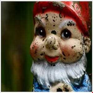 Gnome Fantasies