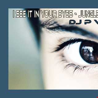 i see it in your eyes   JUNGLE JOE MIX