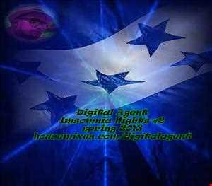 EDM Imsomnia Nights2 2013