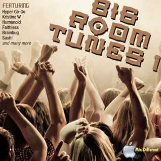 Big Room Tunes volume 1