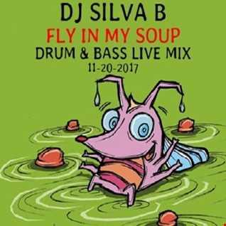 DJ SILVA B   FLY IN MY SOUP DNB LIVE RADIO MIX 11 10 2017