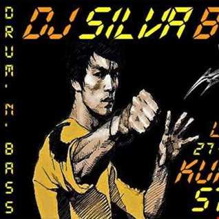 DJ SILVA B   KUNG FU STYLE 27 07 2016