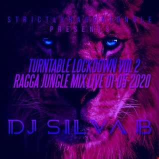 TURNTABLE LOCKDOWN VOL2 RAGGA JUNGLE VINYL MIX LIVE   DJ SILVA B 1 05 2020