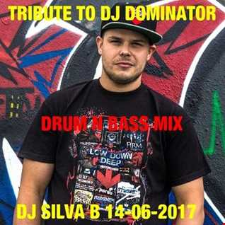 DJ SILVA B   TRIBUTE TO DJ DOMINATOR 14 06 2017