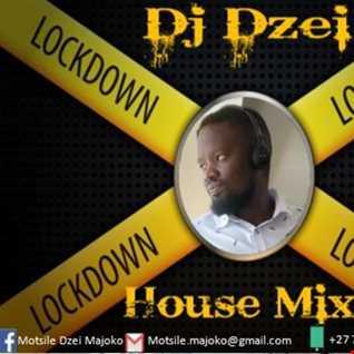 Dj Dzei   Lockdown House Mix