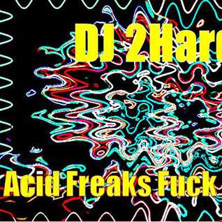 DJ   2Hard   Acid Freaks Fuck On This! Part 2